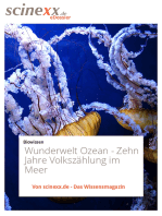 Wunderwelt Ozean