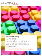 Lego mit Lebensbausteinen