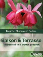 Balkon & Terasse - Pflanzen die im Schatten gedeihen