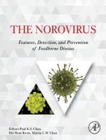 The Norovirus