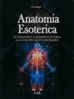 Anatomia Esoterica: Le ghiandole a secrezione interna e lo sviluppo dei poteri psichici