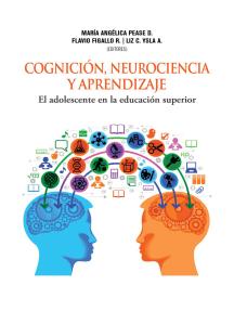 Cognición, neurociencia y aprendizaje: El adolescente en la educación superior