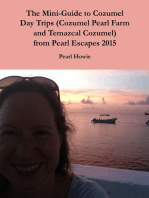The Mini-Guide to Cozumel Day Trips (Cozumel Pearl Farm and Temazcal Cozumel) from Pearl Escapes 2015