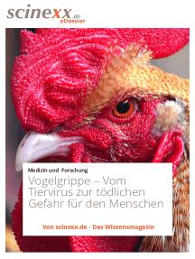 Vogelgrippe: Vom Tiervirus zur tödlichen Gefahr für den Menschen