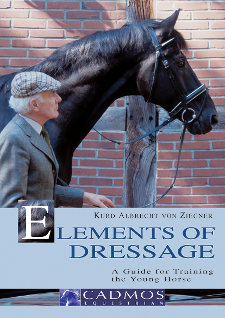 The Art of Riding Odin at Saumur Classical Dressage to High School