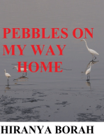 Pebbles on My Way Home