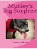 Mutley's Big Surprise