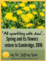 """All sparkling with dew""... Spring and its flowers return to Cambridge, 2016"