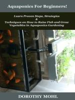 Aquaponics For Beginners!