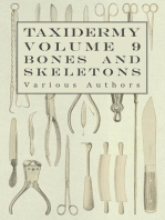 Taxidermy Vol. 9 Bones and Skeletons - The Collection, Preparation and Mounting of Bones
