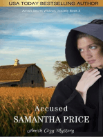 Accused - Amish Mystery