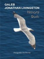 Galeb Jonathan Livingston