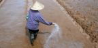 Will Humans Run Out Of Fertilizer?