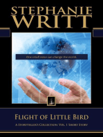 Flight of Little Bird