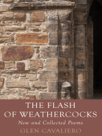 The Flash of Weathercocks
