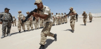 The Shia Militias of Iraq