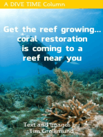 Get The Reef Growing... Coral Restoration Is Coming To A Reef Near You