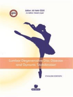 Lumbar Degenerative Disc Disease and Dynamic Stabilization