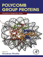 Polycomb Group Proteins
