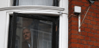 The Astonishing Transformation of Julian Assange