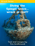 Diving the Spiegel Grove... Wreck or Reef?