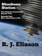 Shoshone Station #1