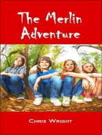 The Merlin Adventure