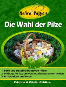 Die Wahl der Pilze: Wie erkennt man Pilze im Wald leicht?