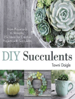 DIY Succulents