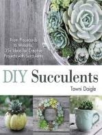DIY Succulents