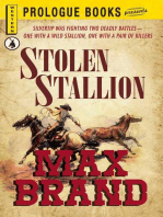 Stolen Stallion