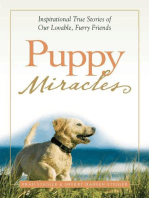 Puppy Miracles