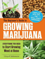 The Beginner's Guide to Growing Marijuana