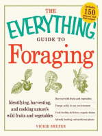 The Everything Guide to Foraging