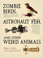 Zombie Birds, Astronaut Fish, and Other Weird Animals
