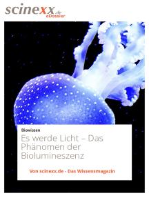Es werde Licht…: Das Phänomen der Biolumineszenz