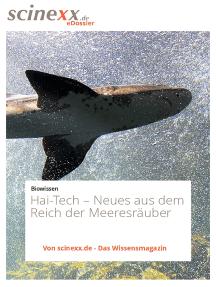 Hai-Tech: Neues aus dem Reich der Meeresräuber