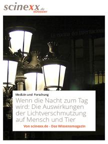 Wenn die Nacht zum Tag wird: Die Auswirkungen der Lichtverschmutzung auf Mensch und Tier