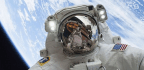 Would You Give Up Perfect Vision for a Trip to Space?
