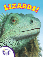 Know-It-Alls! Lizards