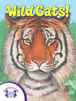 Know-It-Alls! Wild Cats