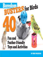 Boredom Busters for Birds