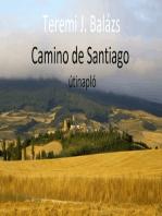 Camino de Santiago - útinapló