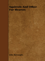 Squirrels and Other Fur-Bearers