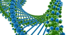 If You Were a Secret Message, Where in the Human Genome Would You Hide?