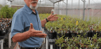 This Man Is Genetically Altering Ecosystems to Save Them from Climate Change