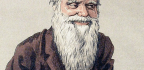 """Why """"Natural Selection"""" Became Darwin's Fittest Metaphor"""