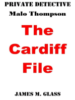 Private Detective Malo Thompson