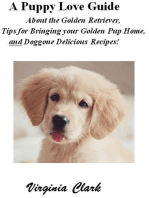 A Puppy Love Guide About the Golden Retriever, Tips for Bringing your Golden Pup Home, and Doggone Delicious Recipes!