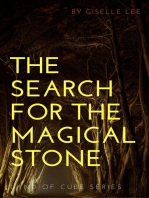 The Search For The Magical Stone